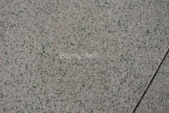 Bomanite Exposed Aggregate Concrete with Bomanite Revealed