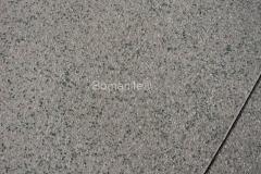 Bomanite Exposed Aggregate Concrete with Bomanite Revealed