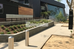 Our associate, Bomel Construction Company, utilized the Bomanite Sandscape Texture Exposed Aggregate System to create decorative concrete pedestrian entrances and walkways around the LAFC Banc of California Stadium, adding durability and consistent texture that blends beautifully with the existing landscape.